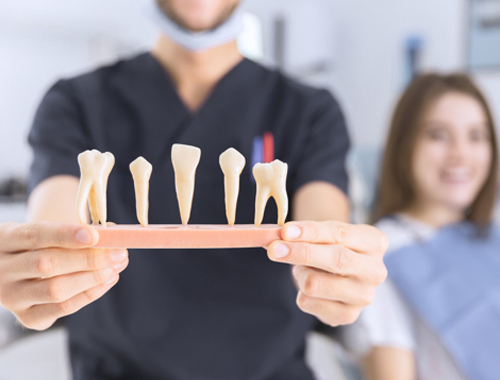 German Dentist Recognized for Extracting World's Longest Human Tooth